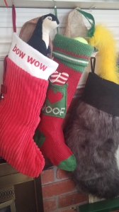 They kept harassing the stockings