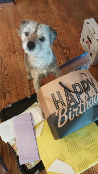 Hold up! It's my birthday? YESSS!!